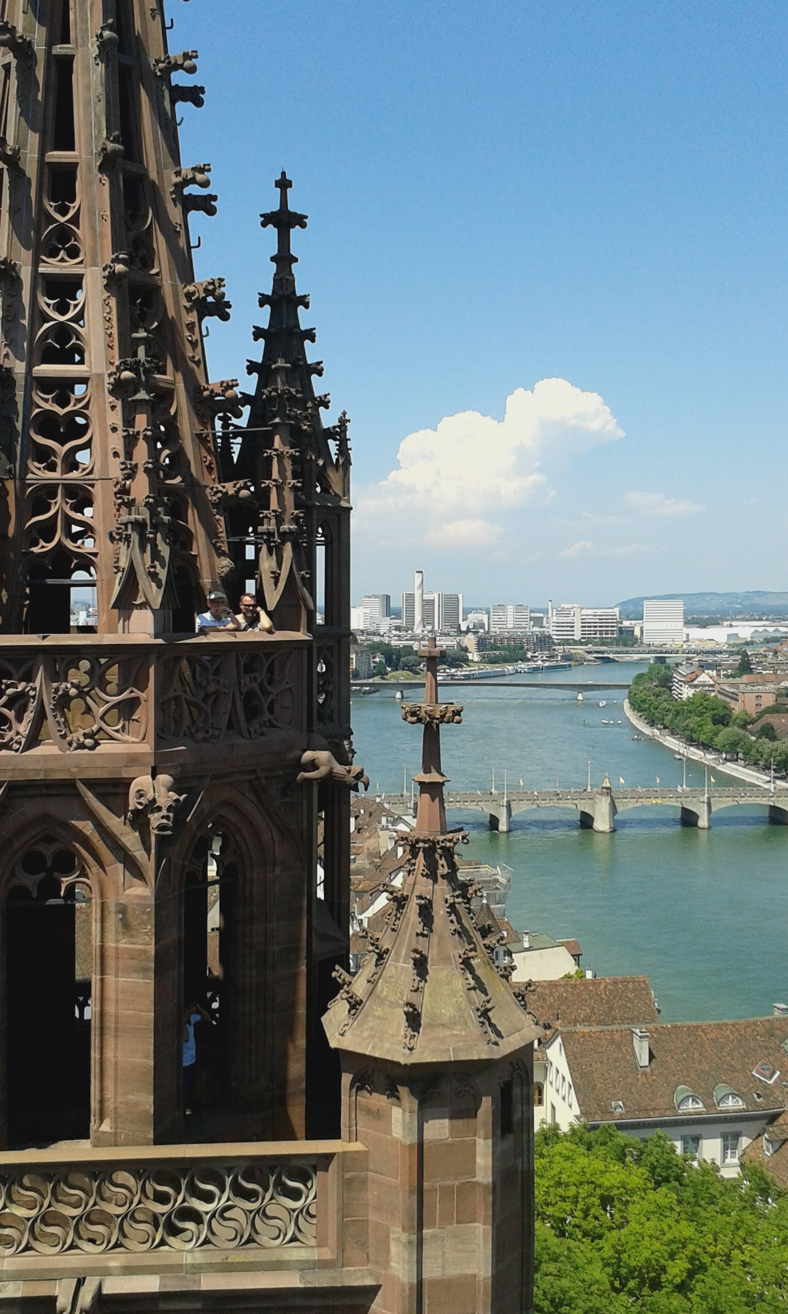 View from the top of the Münster in Basel.