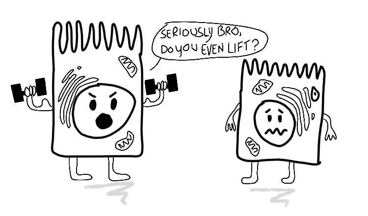 "Cartoon of one cell lifting weights and asking another cell: ""Seriously bro, do you even lift?"""