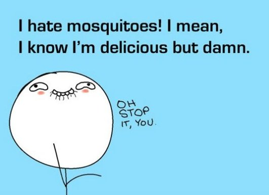 mosquitoes-meme