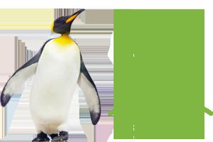 penguinone-peak-scientific