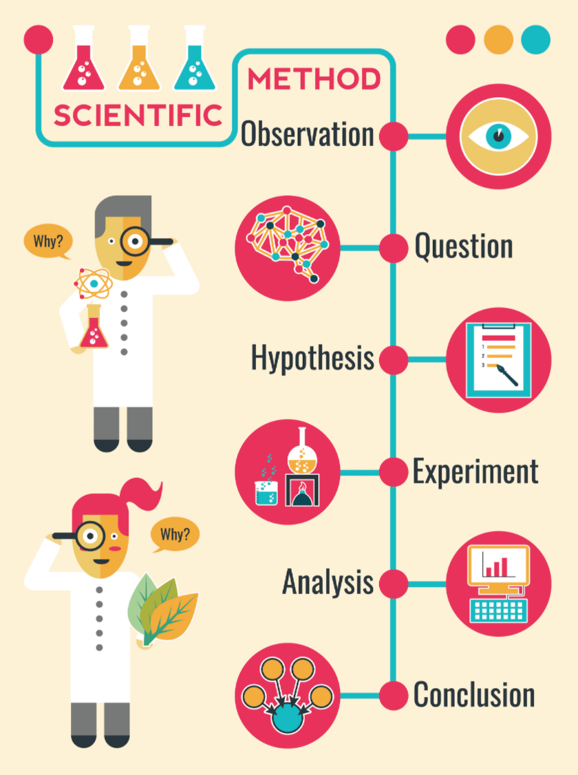 The Scientific Method: Obervation, Question, Hypothesis, Experiment, Analysis, Conclusion