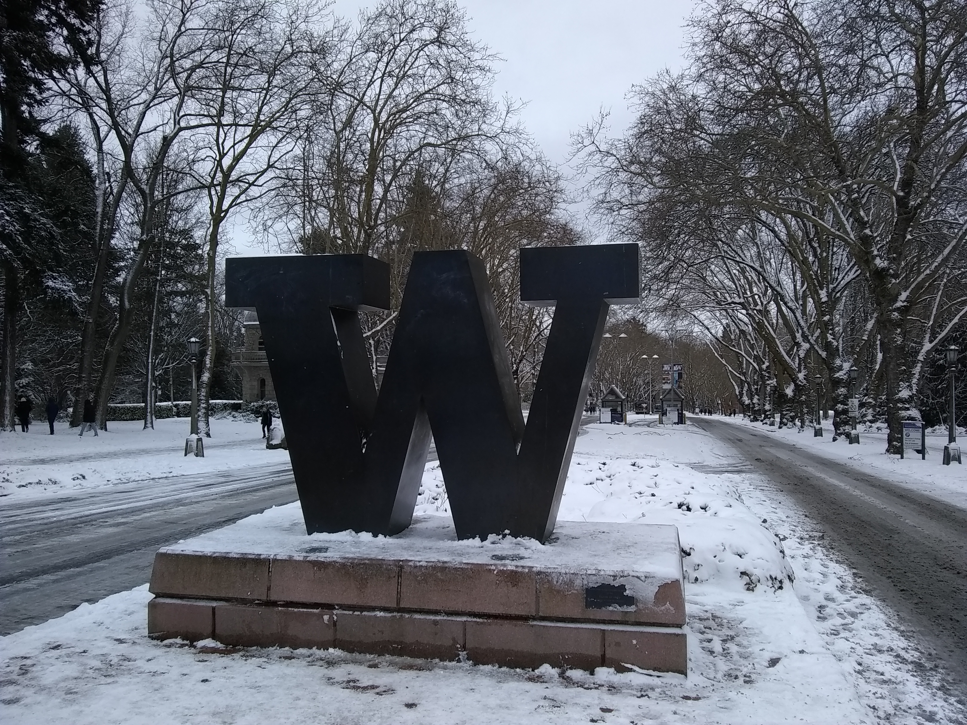 "The ""W"" from the University of Washington."